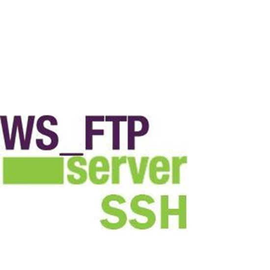 WS_FTP Server with SSH + 1 Year Support